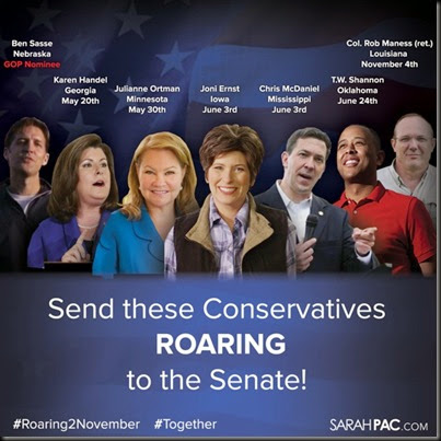Send These Conservatives to the Senate!