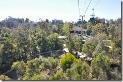 San Diego Zoo 20