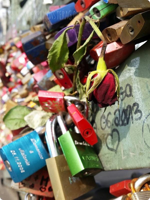 Glücksmoment der Woche - Hohenzollerbrücke