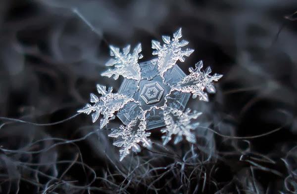 Snowflake closeup diy setup alexey kljatov 4