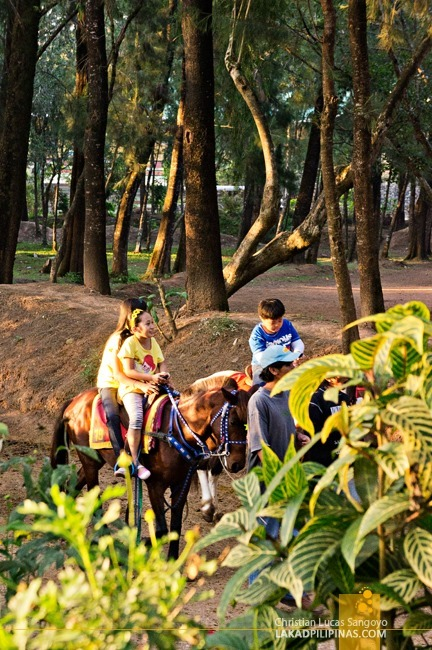 Kids Riding Ponies at Baguio City's Wright Park