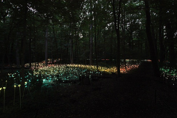 bruce munro 4
