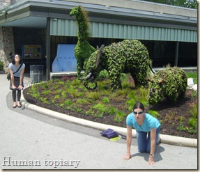wendy and katrina being the topiary