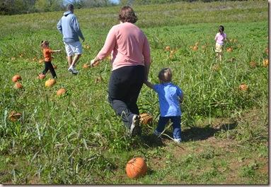 Pumpkin 049