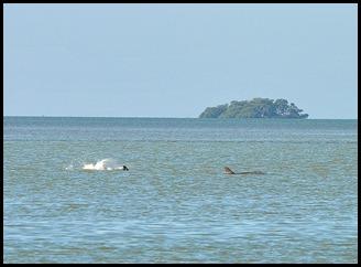 01h4a - Florida Bay