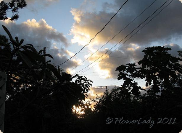11-13-sunrise