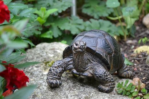 Pet statue tortoise
