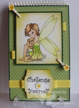 challenge book 026