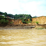 Photo1: A typical riverbank erosion site in Rajang river 