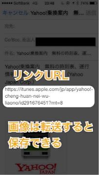 IMG_7233.jpg