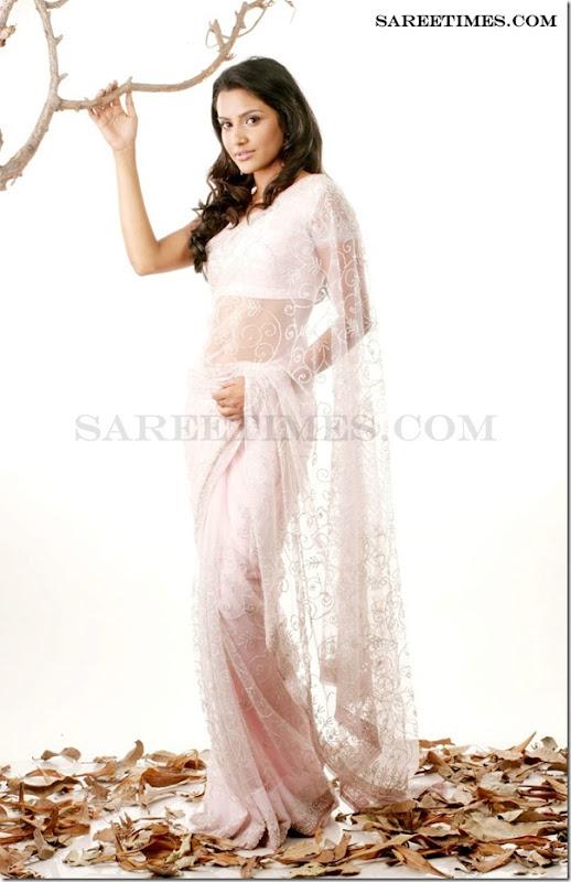 Priyaanand_Amazing_Saree