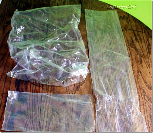 usesforplasticpackingbags