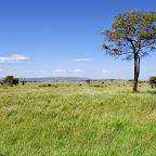 Kati Kati Camp, Blick in die Serengeti © Foto: Judith Nasse | Outback Africa Erlebnisreisen