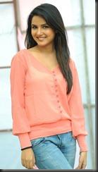 Actress Jasmine Bhasin at Dilunnodu Press Meet Stills