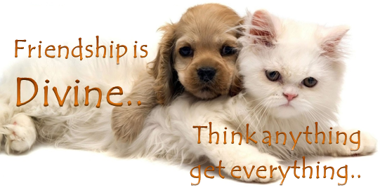 Top 10 best friendship day 2014 gifts thoughtful ideas to celebrate Divine quote CA Vikram Verma 10 Alone Author Vikrmn