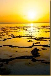 Zanzibar sunrise by AJ Levan