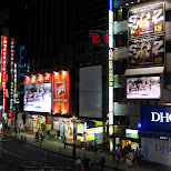 nightlife in Shibuya in Shibuya, Tokyo, Japan