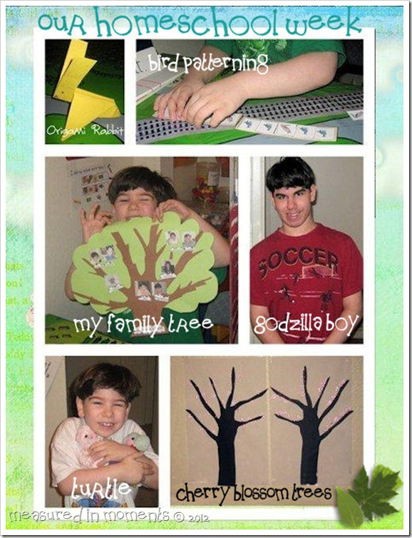 SCRAPBOOK PAGE homeschool week 2-3