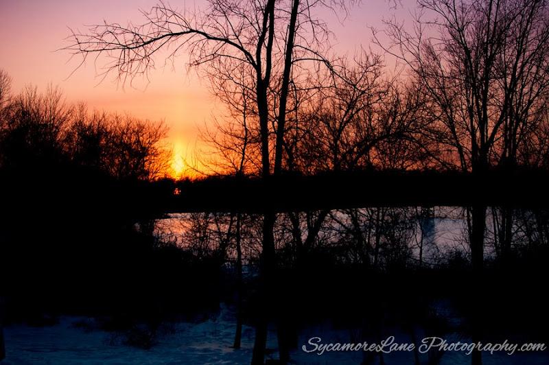 SycamoreLane Photography--6