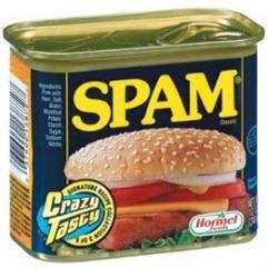 spam-300x300