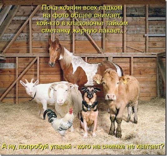 1582d7c75fffe2f8f1ef1d53500_prev