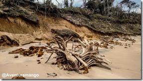 Erosão na Praia de Malembá