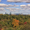 Boston Skyline view from Arnold Arboretum