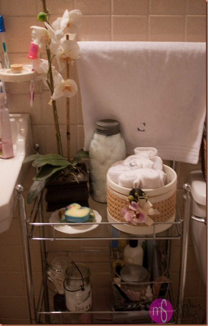 bathroom storage 009