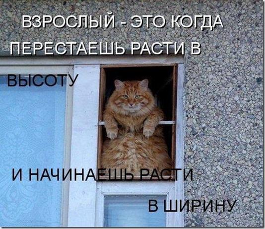 1252660594_1252659116_1252475972_1229156287_14kotov