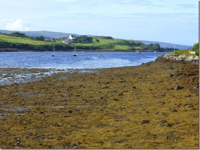 Isle of Skye 047
