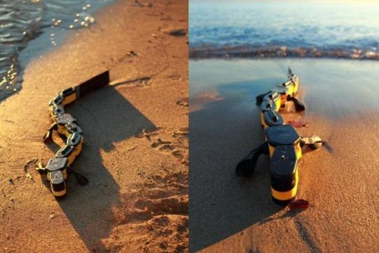 Salamandra Robótica 01