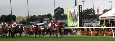 Race8_cox plate straight