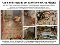 Cadela é Estuprada em Banheiro em Cruz Alta
