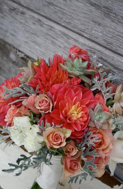 309036_10151152466415152_339586725_n flora organica designs