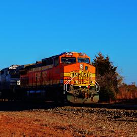 BNSF 4146 2659 by Jim Suter - Transportation Trains