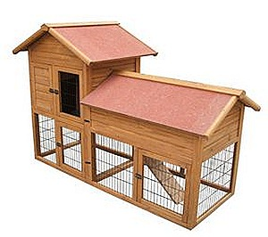 bunny hutch2