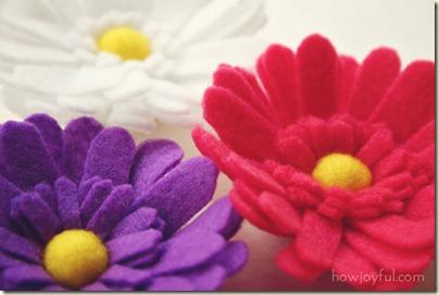 daisy-flower-2