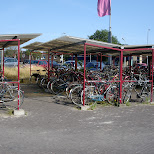 bicycles at the fast flying ferry to amsterdam in Amsterdam, Noord Holland, Netherlands