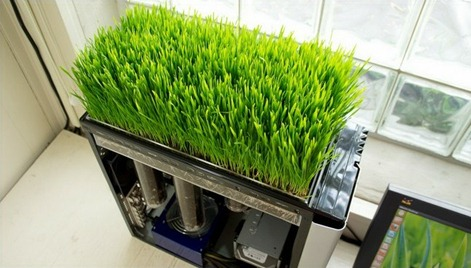 green computing - literally!