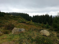 20120921_105438.jpg