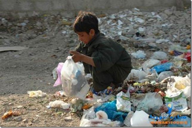 طعام في مكب النفايات