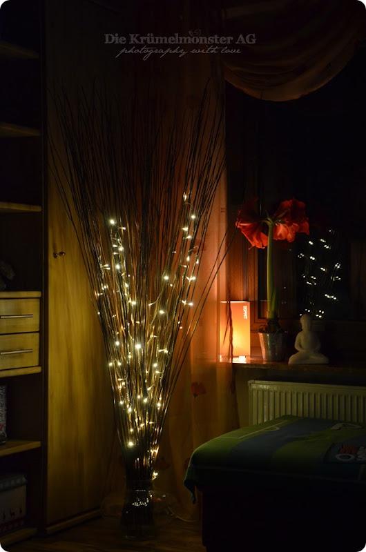 Lichterglanz - Weidenlämpchen (7)