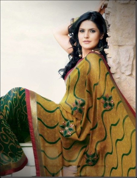 zarine-khan-latest-photo-shoot-in-saree-4