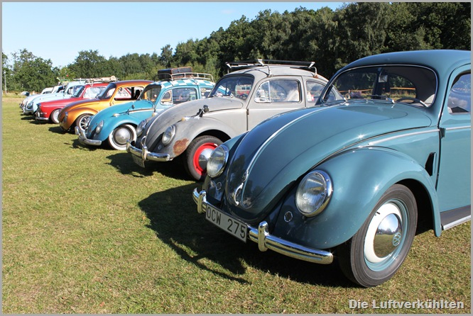 Herbie 005