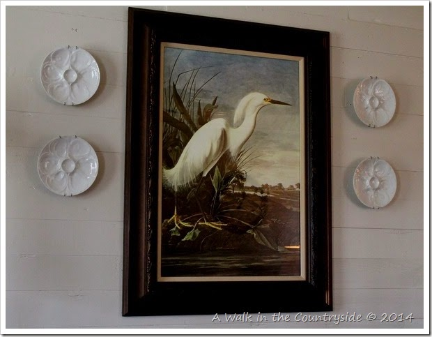 framed John James Audubon poster from Zazzle.com