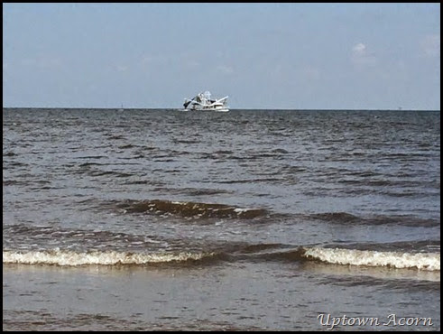 shrim boat