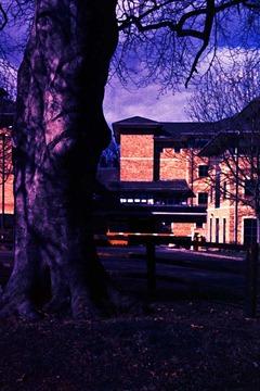 Riseholme-Campus-8---XPRO