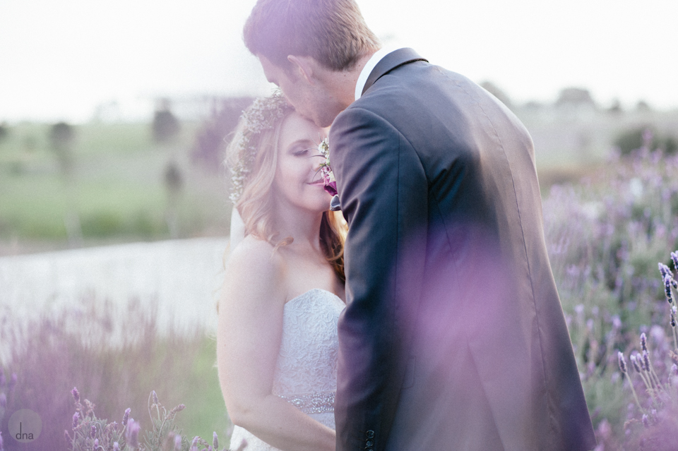 Amy and Marnus wedding Hawksmore House Stellenbosch South Africa shot by dna photographers_-730.jpg