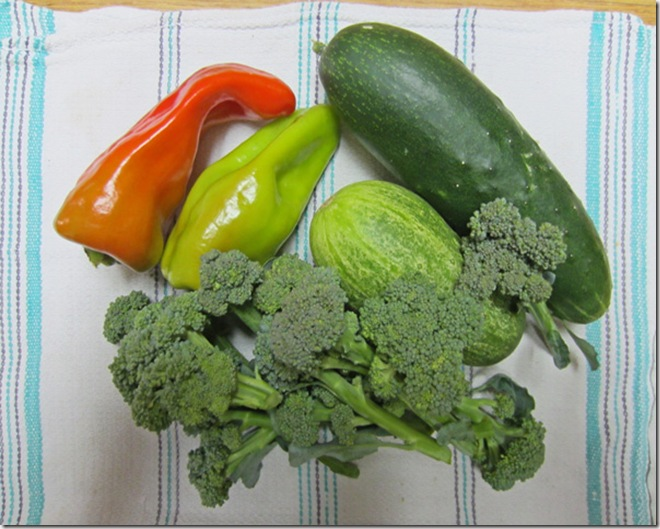 Peppers, cucumbers and broccoli