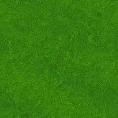 grass-texture-5